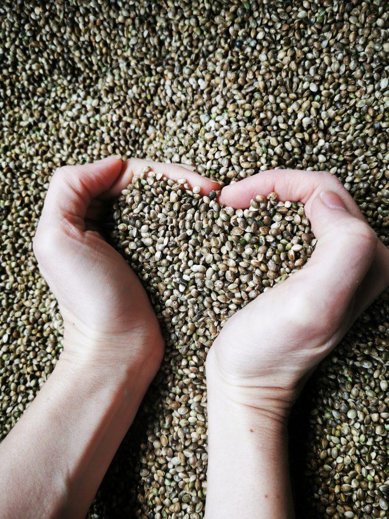 Konopné semeno (3kg)